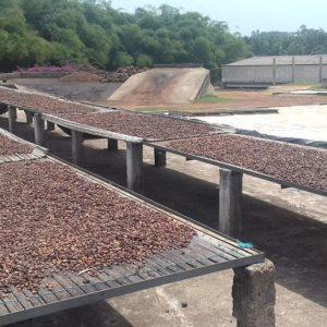 Due diligence ESG des activités de sourcing et négoce de cacao